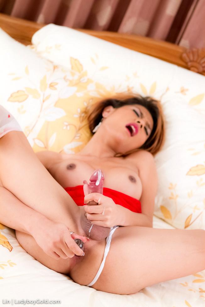 Asian Shemale Lin