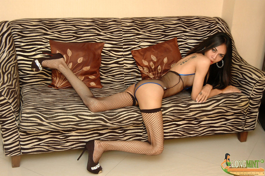 Asian Tgirl Long Mint - Zebra Sofa Wjuny