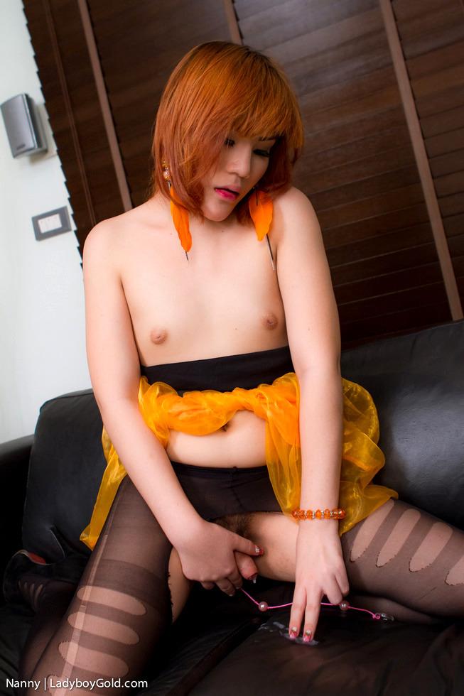 Asian Tgirl Nanny