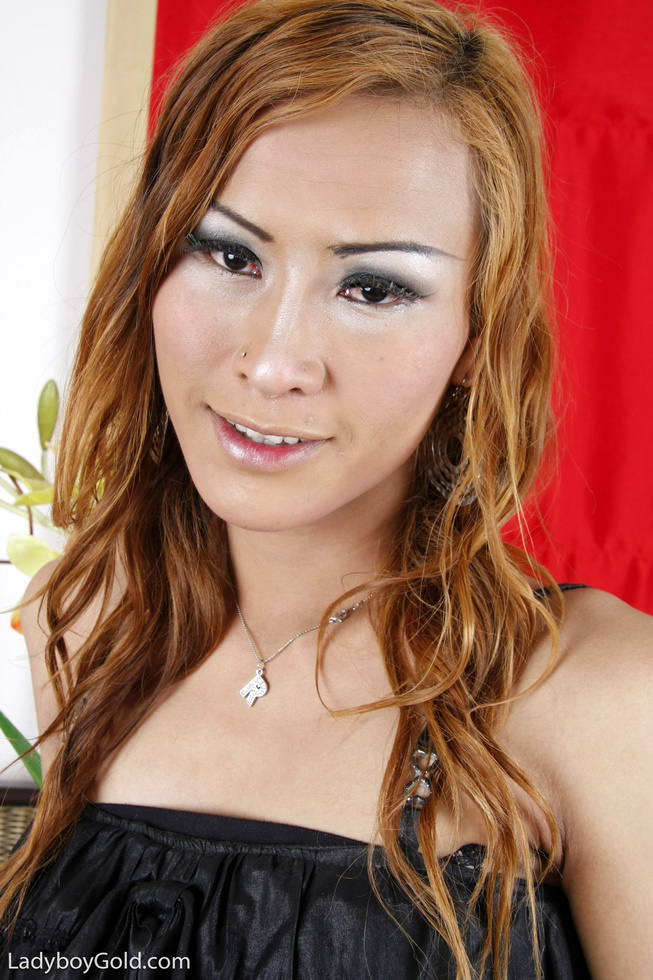 Asian Transexual Anne