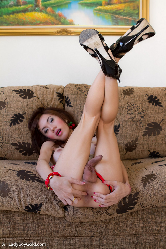 Bangkok Shemale A - A Girlfriend Anal Play