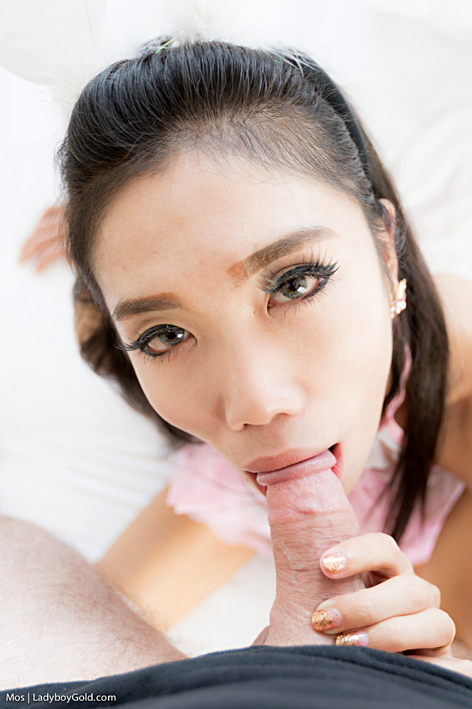 Bangkok Shemale Mos