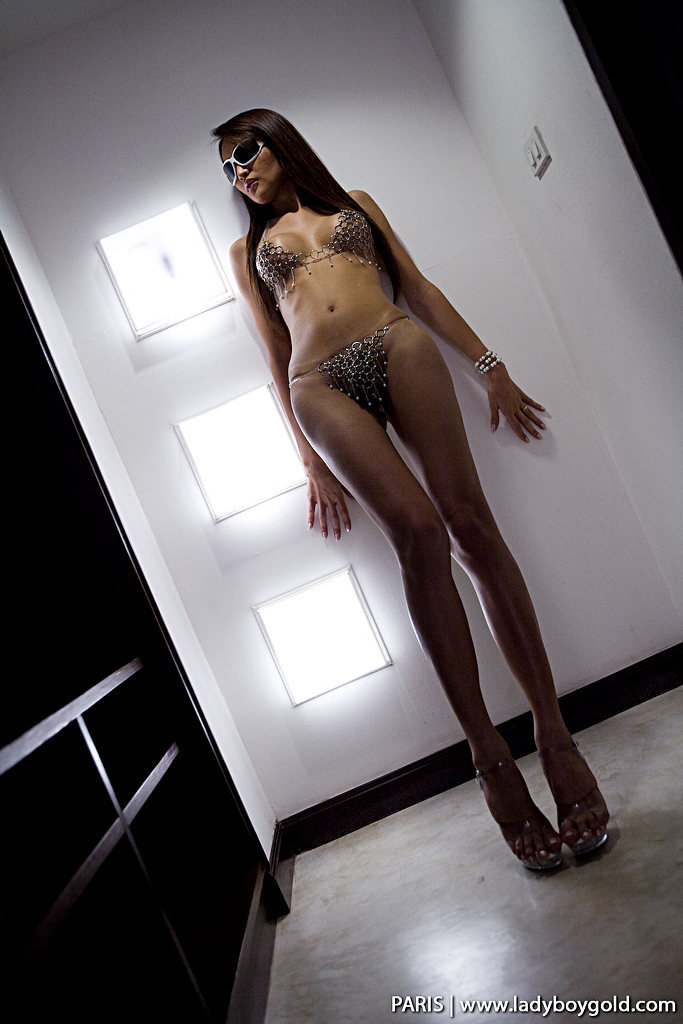Bangkok T-Girl Paris - Paris Night Hunter