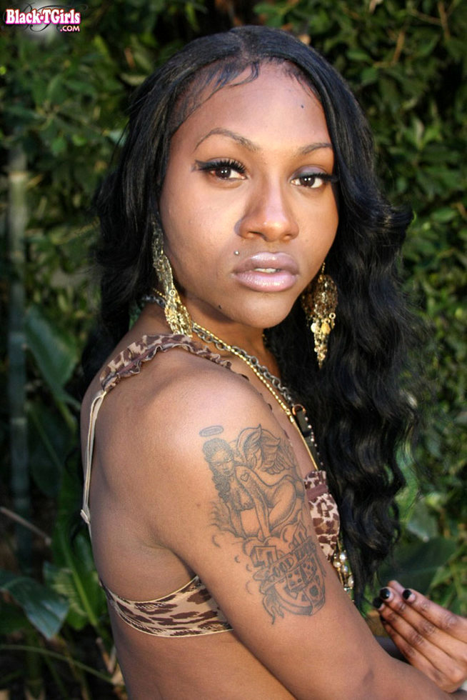 Black Ladyboy Ashley