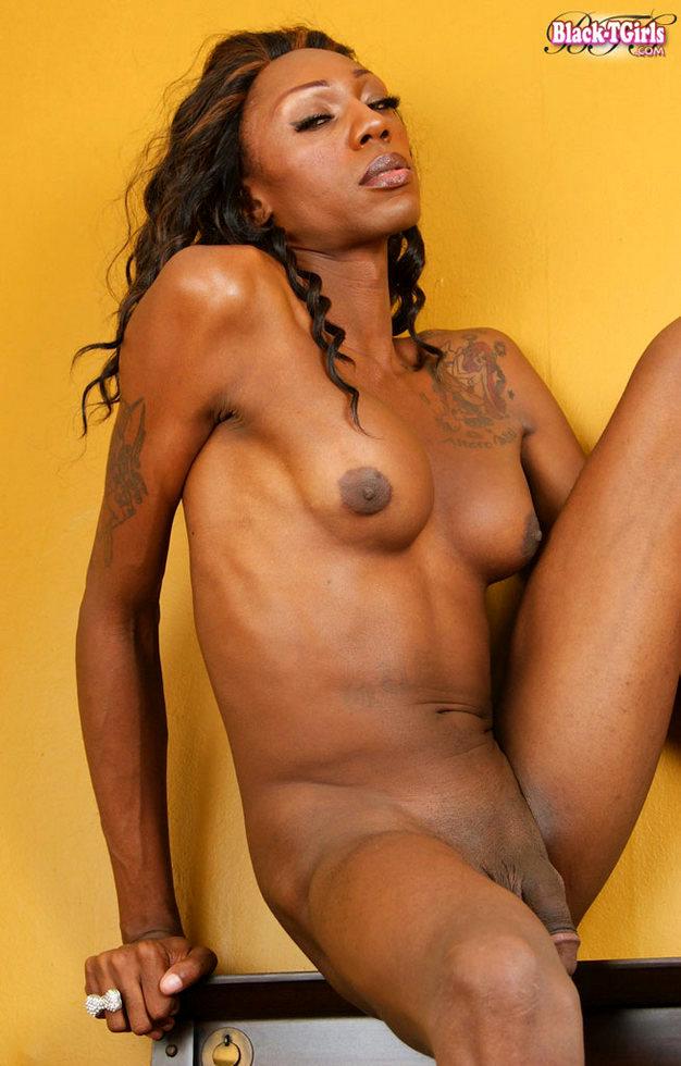 Black Ladyboy Chrystie Mattel