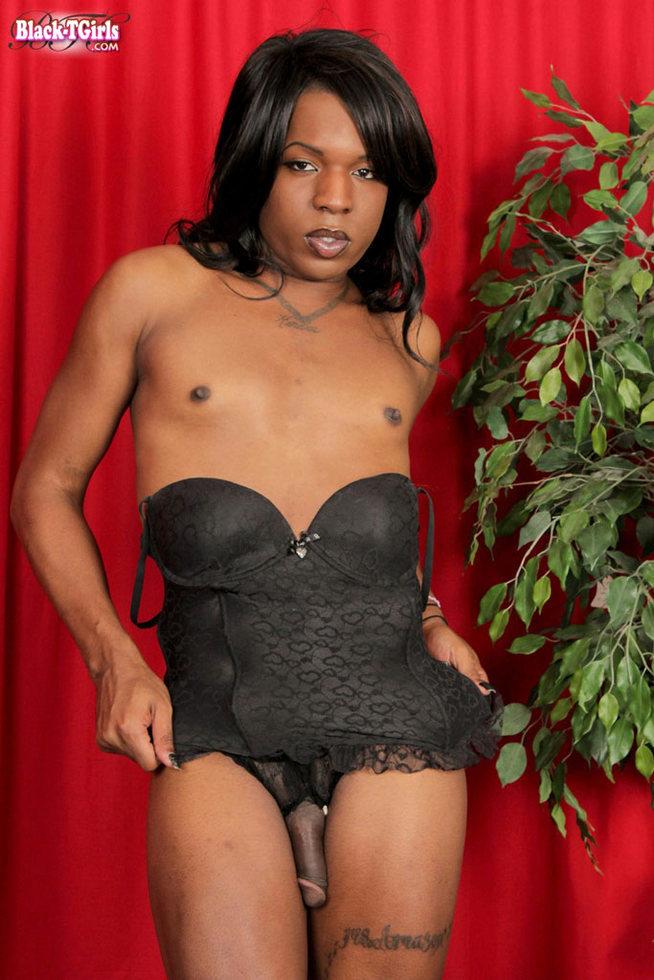 Black T-Girl Amina