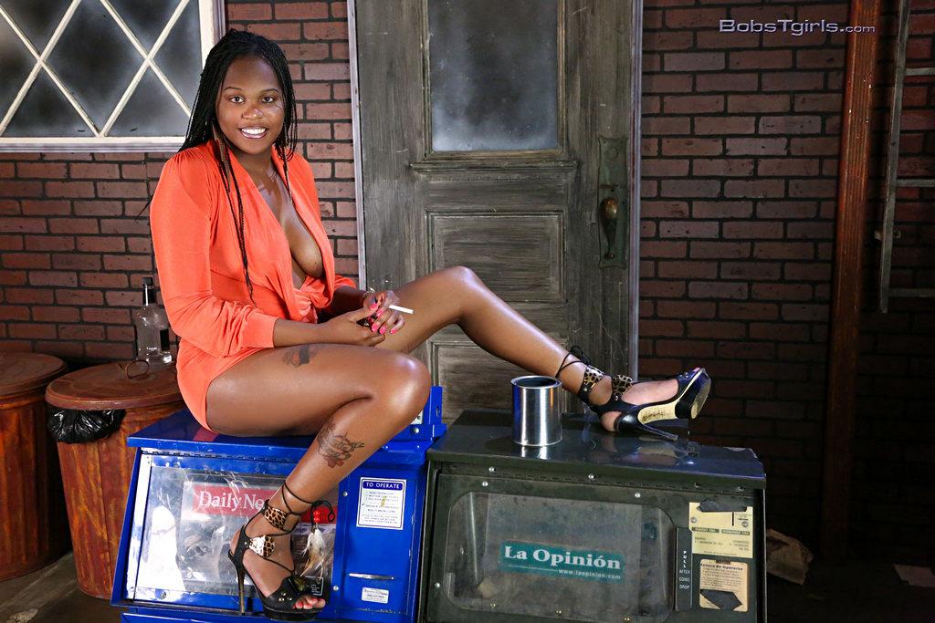 Black T-Girl Nia Lee - Nia Lee Alley Cat