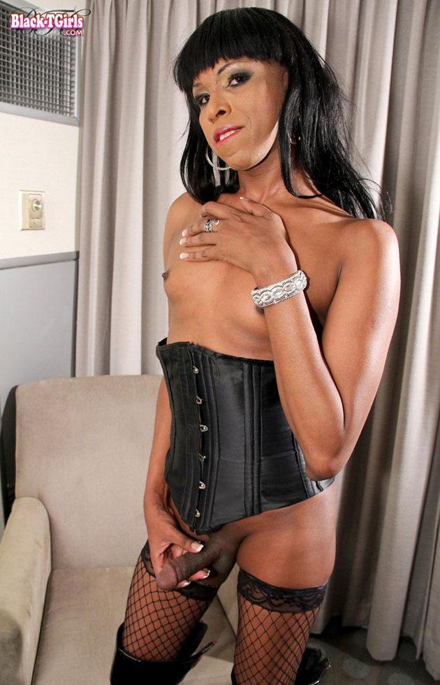 Black Tgirl Ashley Foxx - Ashley Foxx