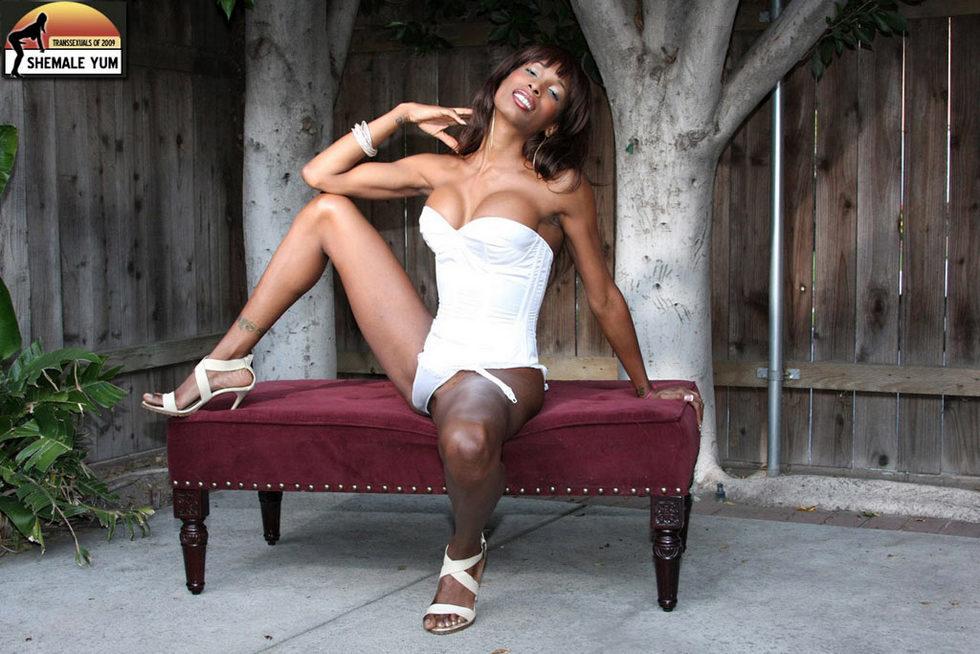 Black Tgirl Natassia Fantasies - Natassia Fantasies Busty Black Stroker