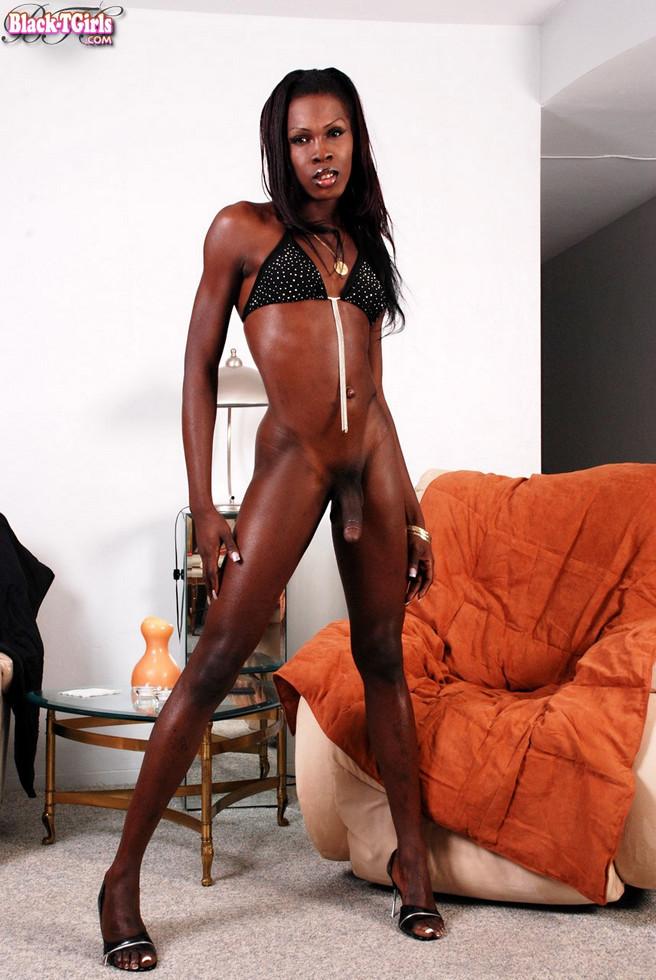 Black Tgirl Taylor