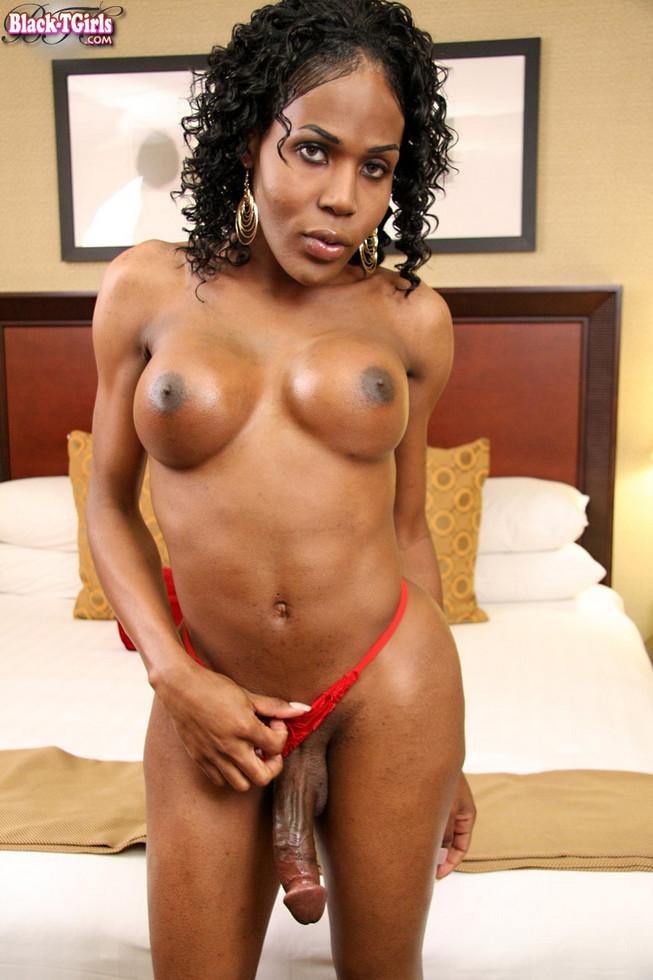 Black Tgirl Tracey