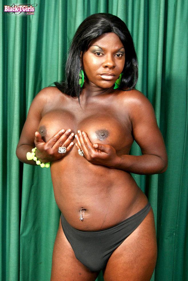 Black Transexual Amber