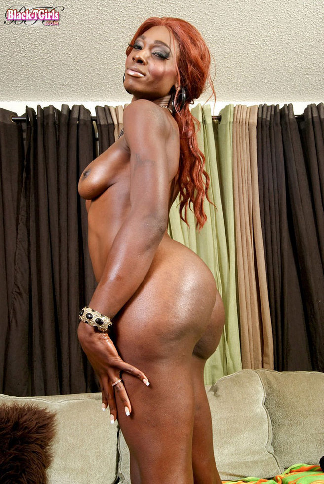 Black Transexual Amiee Lee