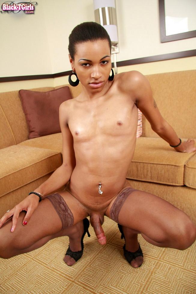 Black Transexual Egypt