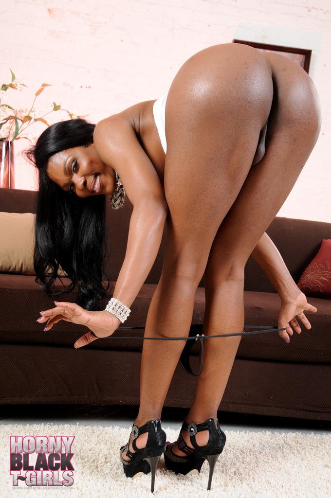 Black Transexual Gabriella Love