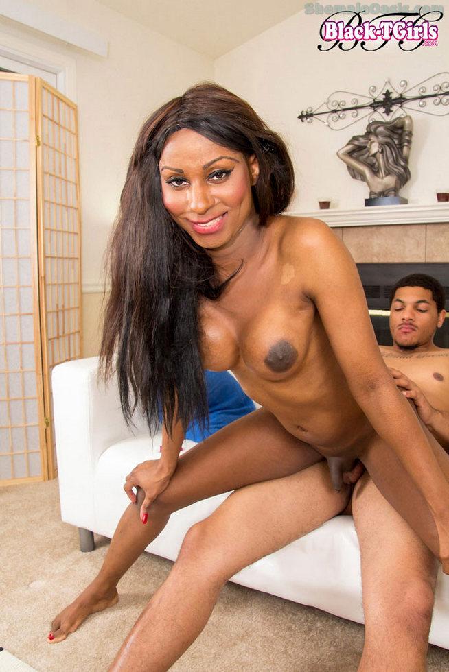Black Transexual Krissy Sextoy