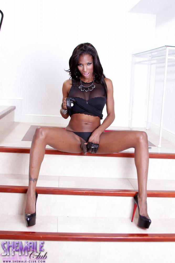 Black Transexual Natassia Fantasies - Natassia Fantasies
