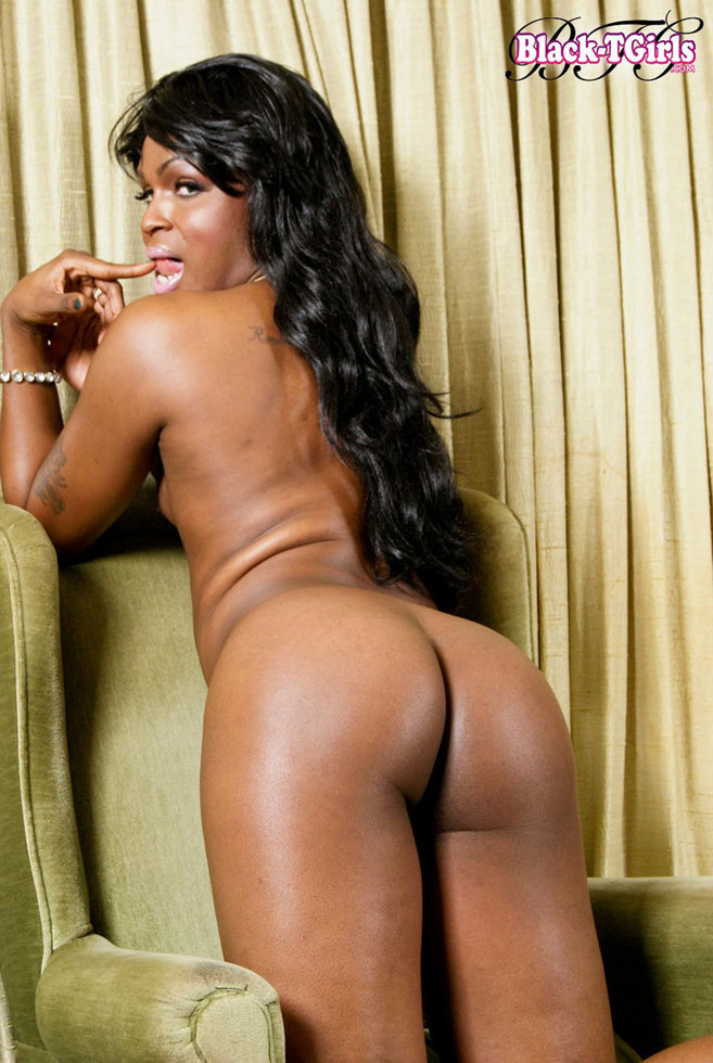 Black Transexual Takila