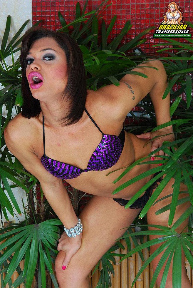 Brazilian Tgirl Andressa Olivetto - Andressa Olivetto