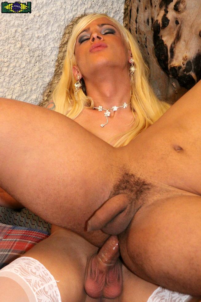 Brazilian Tgirl Dany De Castro