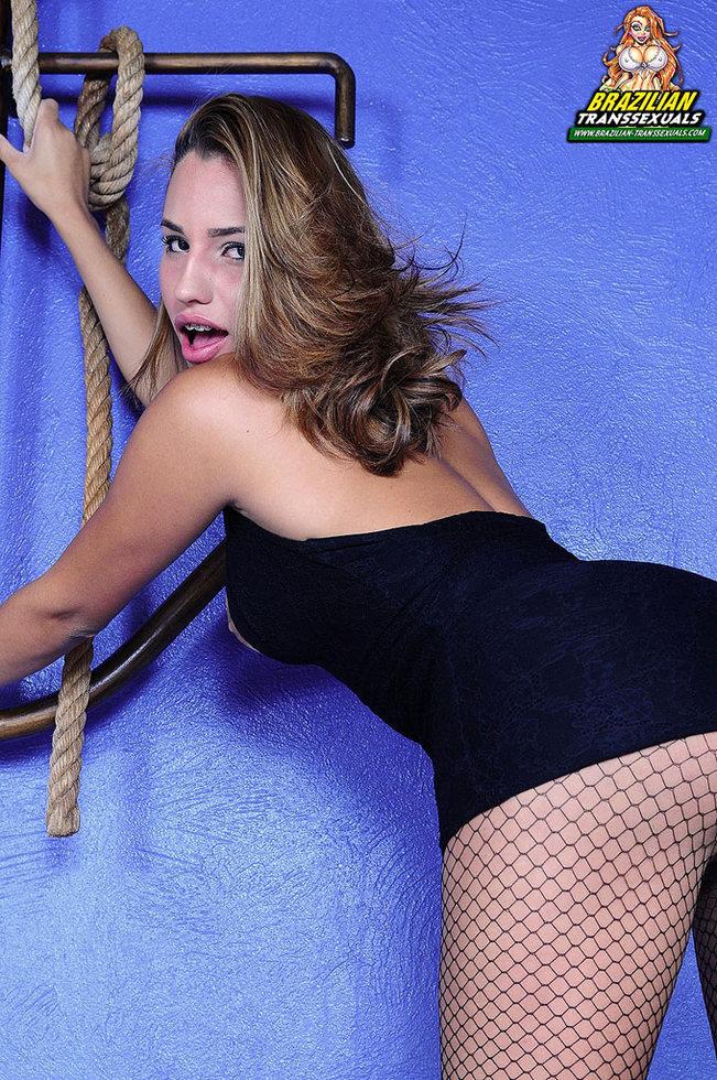 Brazilian Transexual Dany Novaes - Dany Novaes Fishnet