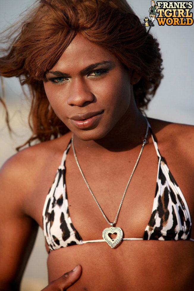 Brown Skinned T-Girl Perola Negra