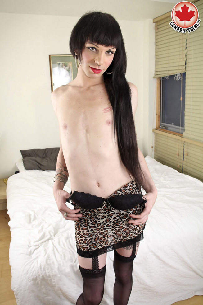 Canadian T-Girl Gina Ferrara