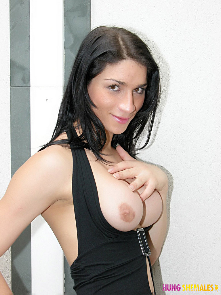 Hung Tgirl Adriana Rodrigues