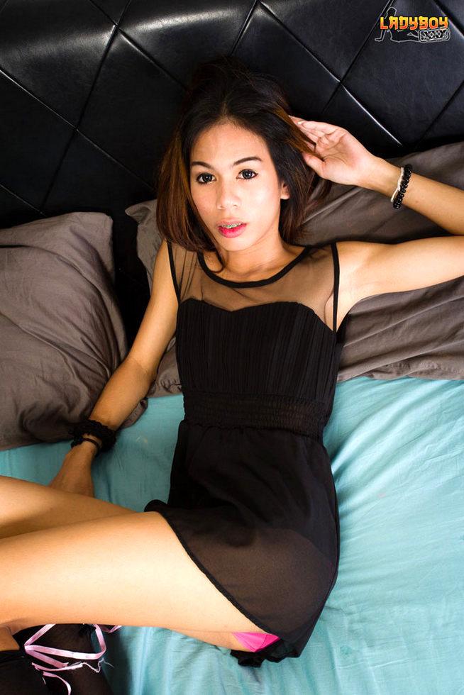Hung Transexual Meeni