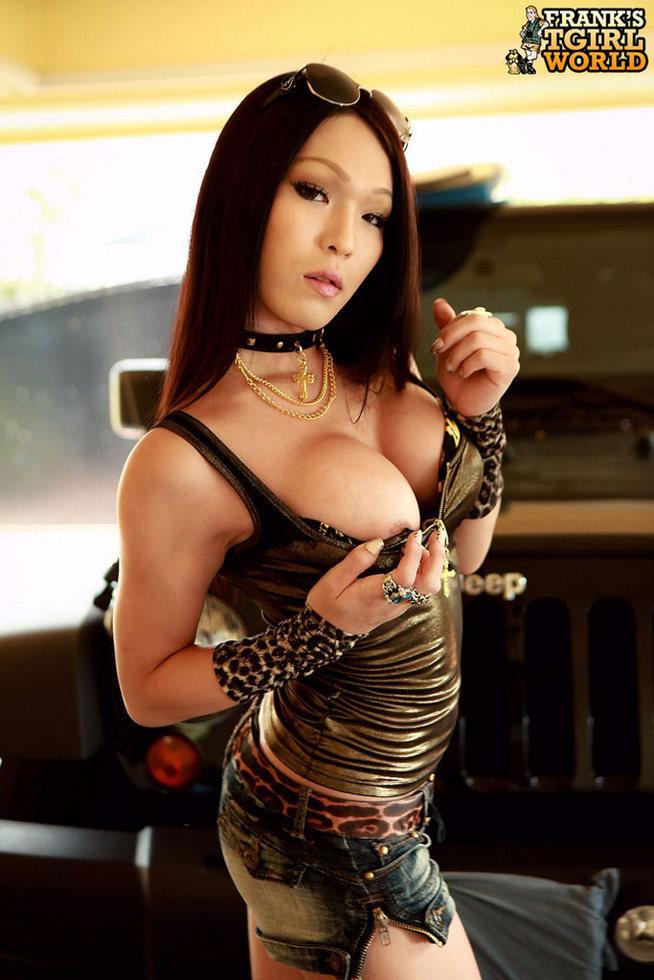 Japan T-Girl Minami