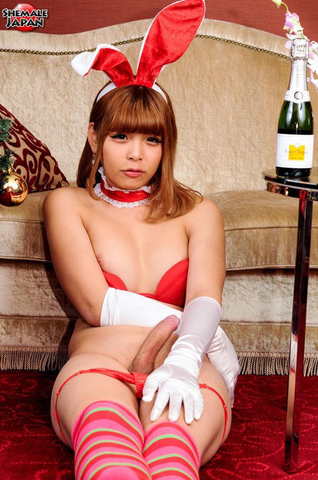 Japan T-Girl Noa Nishino