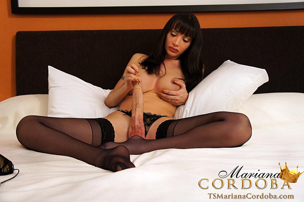 Ladyboy Mariana Cordoba - Blackstockings