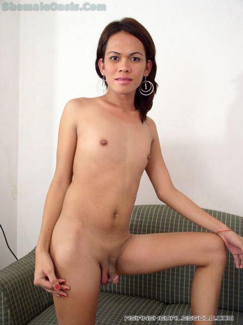 Natural Thai Ladyboy -