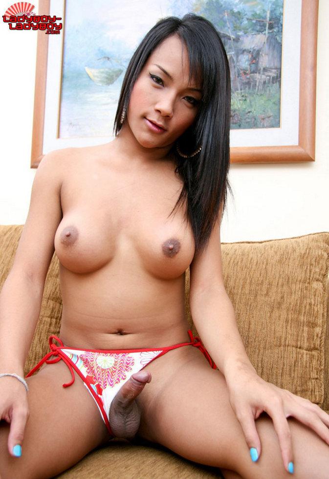 New Transexual In Pattaya