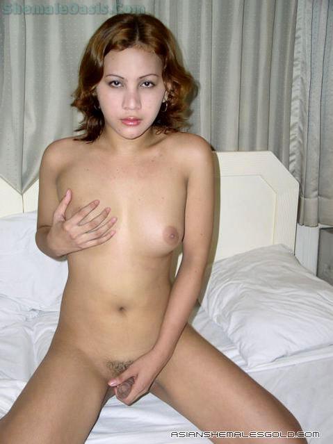 Nice Thai Ladyboy Amateur!