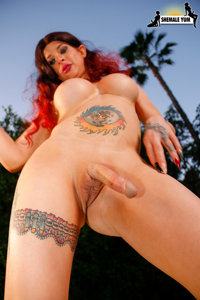 Old T-Girl Diamond Dall