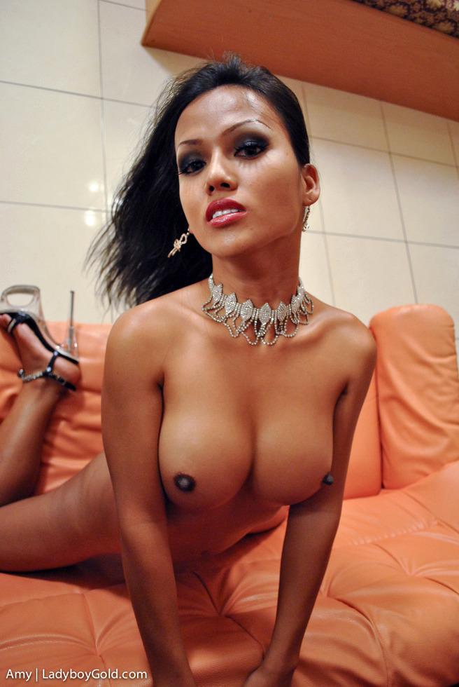 Pattaya T-Girl Amy - Amy Dress Up Dickgirl