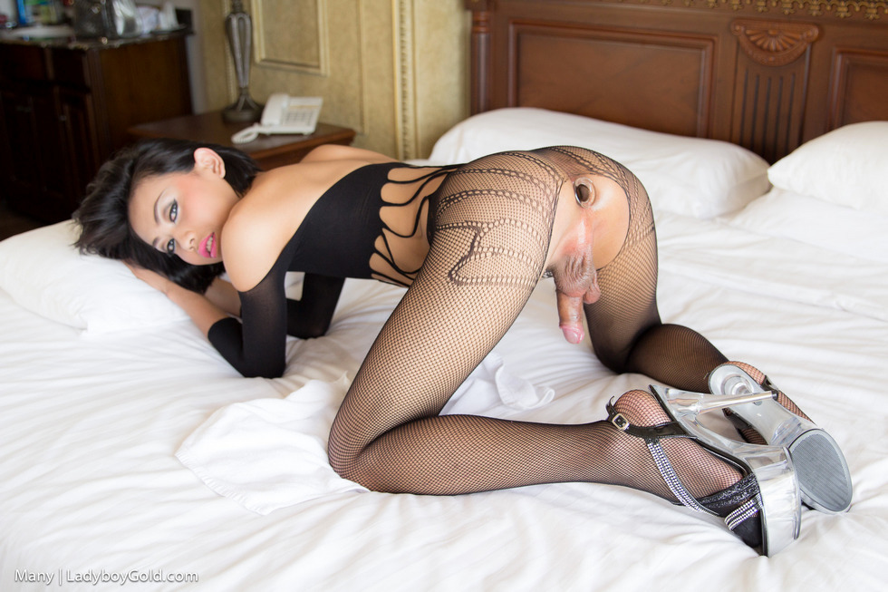 Pattaya T-Girl Many - Many Black Bodysuit Sperm Eating Tfd