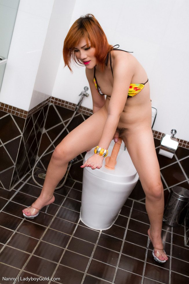 Pattaya T-Girl Nanny - Nanny Master Bath Masturbation