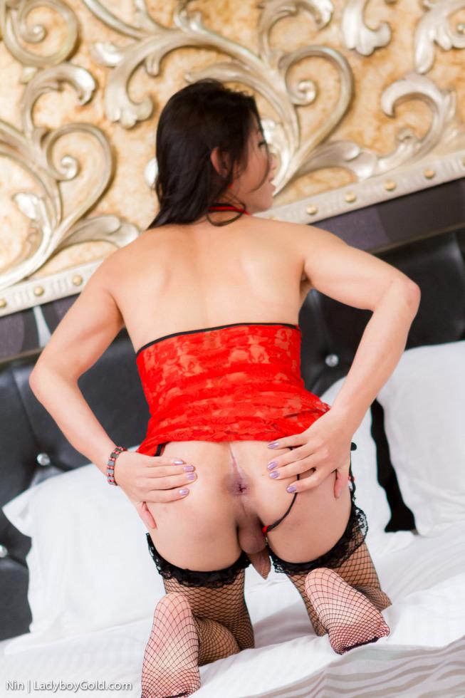 Pattaya T-Girl Nin - Nin Oriental Orgasm