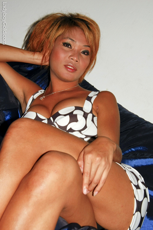 Pattaya T-Girl Roxy