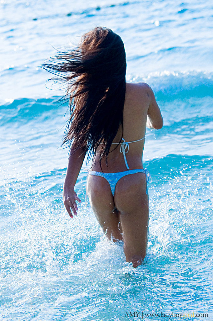 Pattaya Tgirl Amy - Amy Beach Bunny