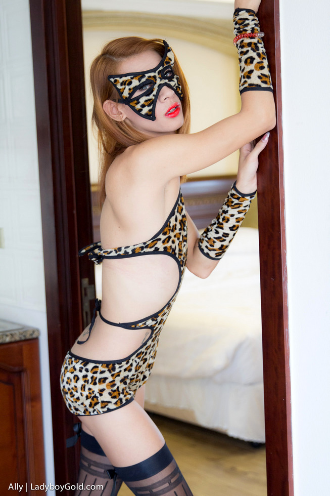 Pattaya Transexual Ally - Ally Cat In Heat Sexfest