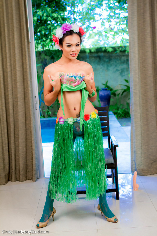 Pattaya Transexual Cindy Aka Rose