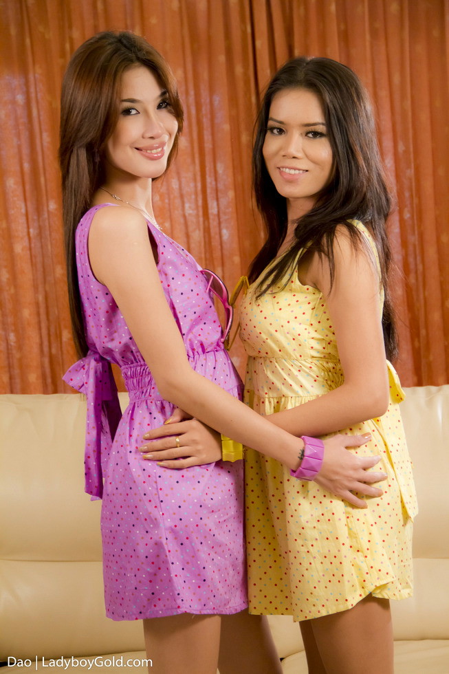 Pattaya Transexual Dao - Dao Girlfriend Sex Tft