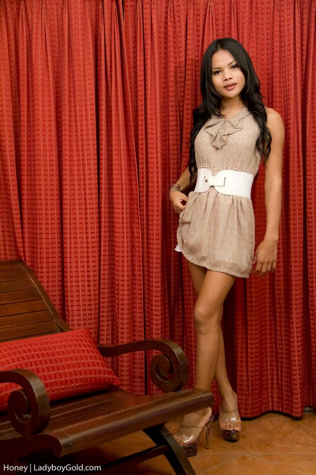 Pattaya Transexual Honey - Honey Girlfriend Dress