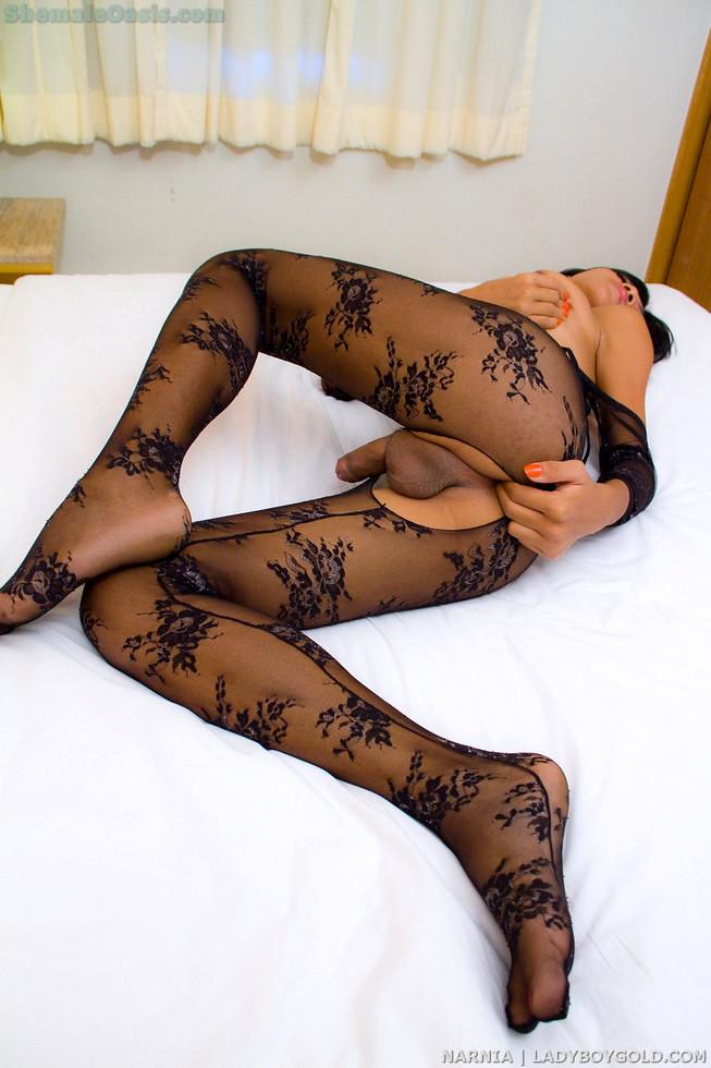 Pattaya Transexual Narnia - Narnia Black Lace Bodysuit