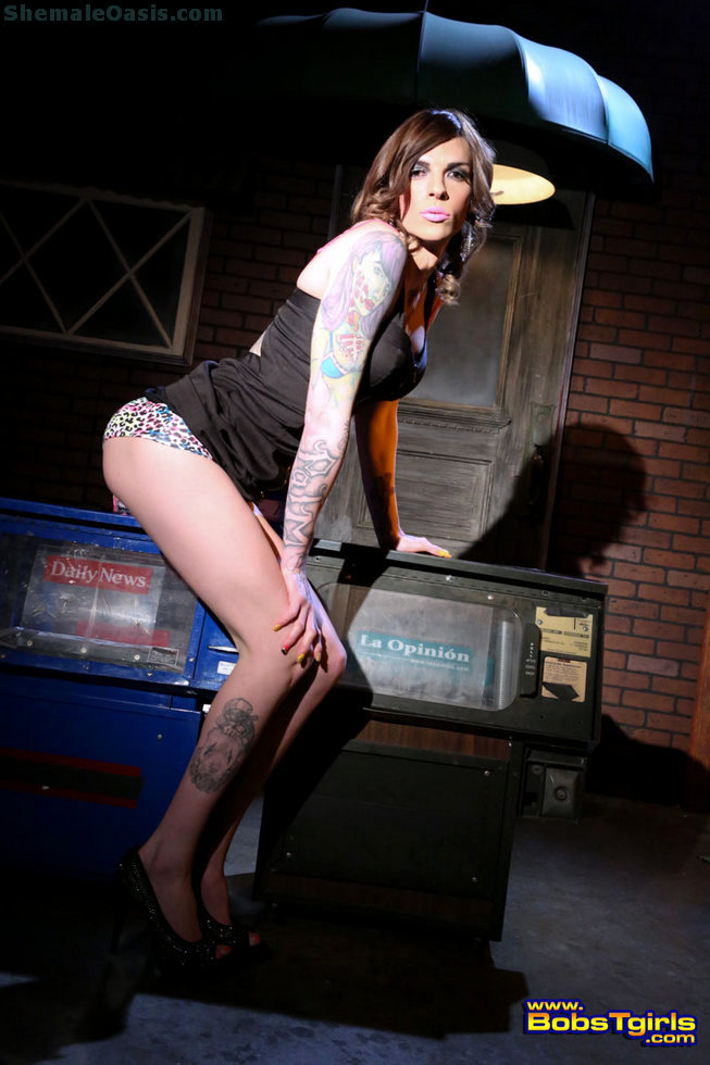 T-Girl Chelsea Marie - Chelsea Marie Alley Cat
