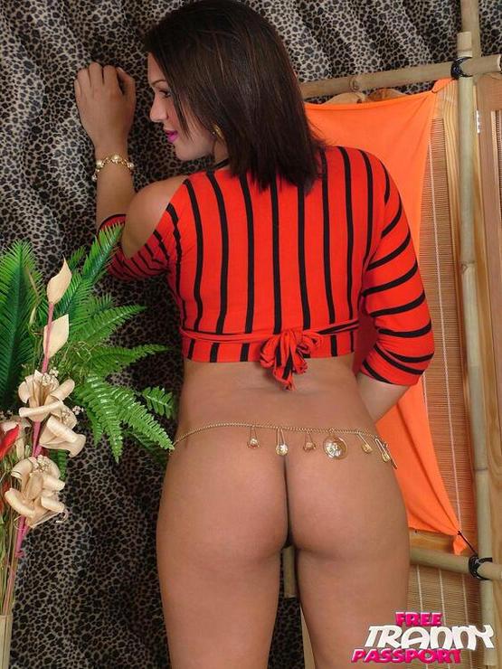 T-Girl Daniela Paris