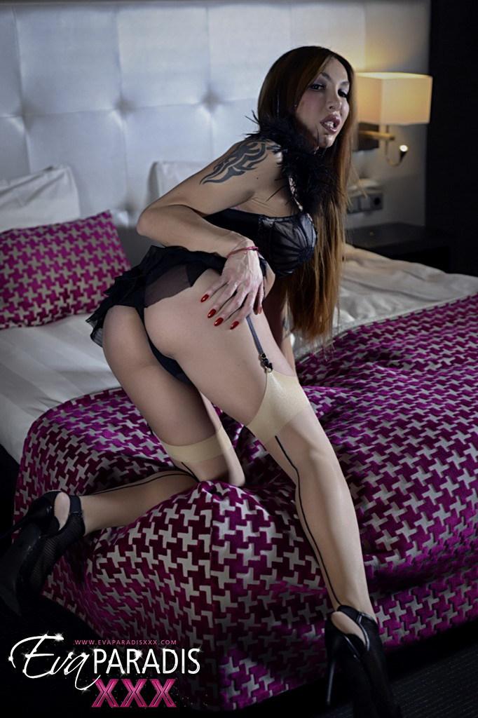 T-Girl Eva Paradis - Glamour Prostitute